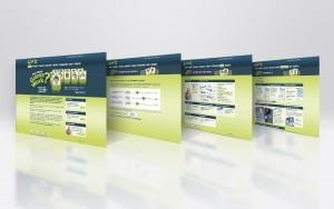 microsite - integrated marketing campaign