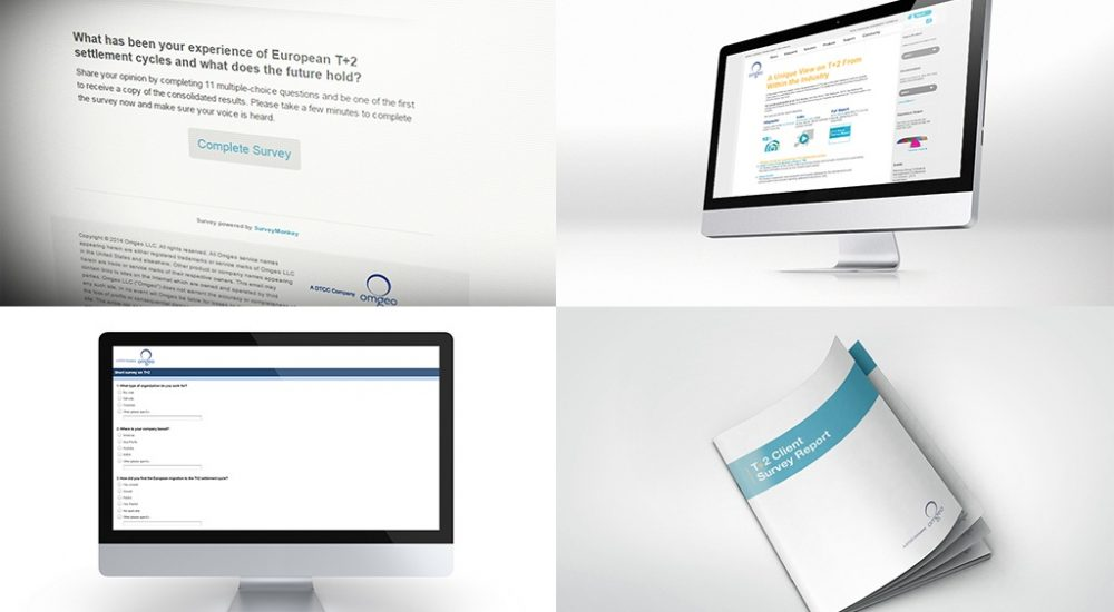 Survey and infographic design for financial services